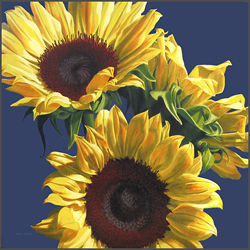 Sunflowers On Blue - Nance Danforth Paintings