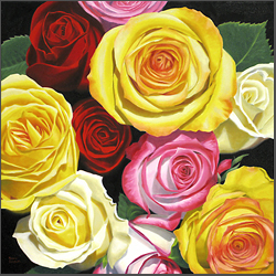 Mixed Roses - Nance Danforth Paintings
