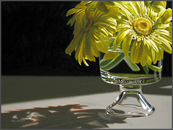 Gerbera Daisies By The Window - Nance Danforth Paintings
